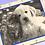 Thumbnail: Pet V-Carve Art