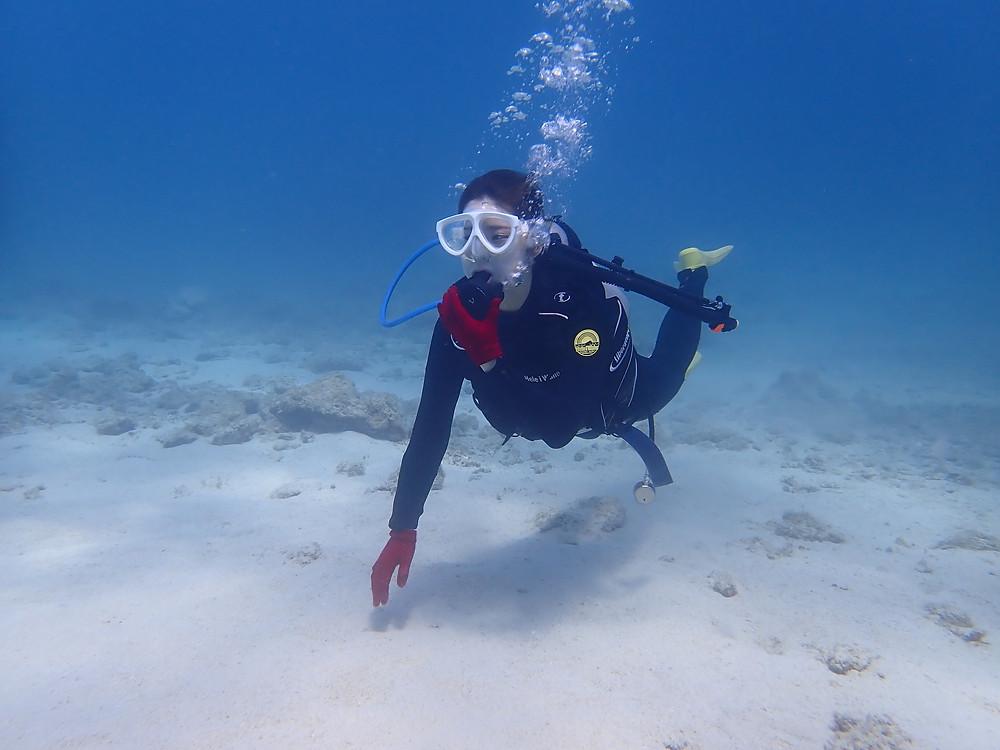 沖縄本島北部本部町で体験ダイビング