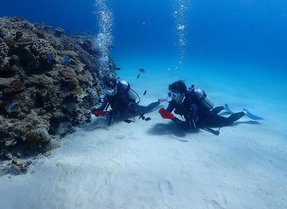 沖縄北部ゴリラチョップ で体験ダイビング