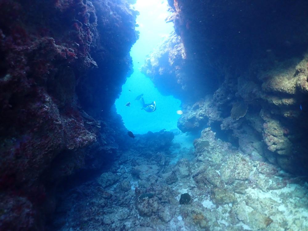 水中洞窟潜り スキンダイビング