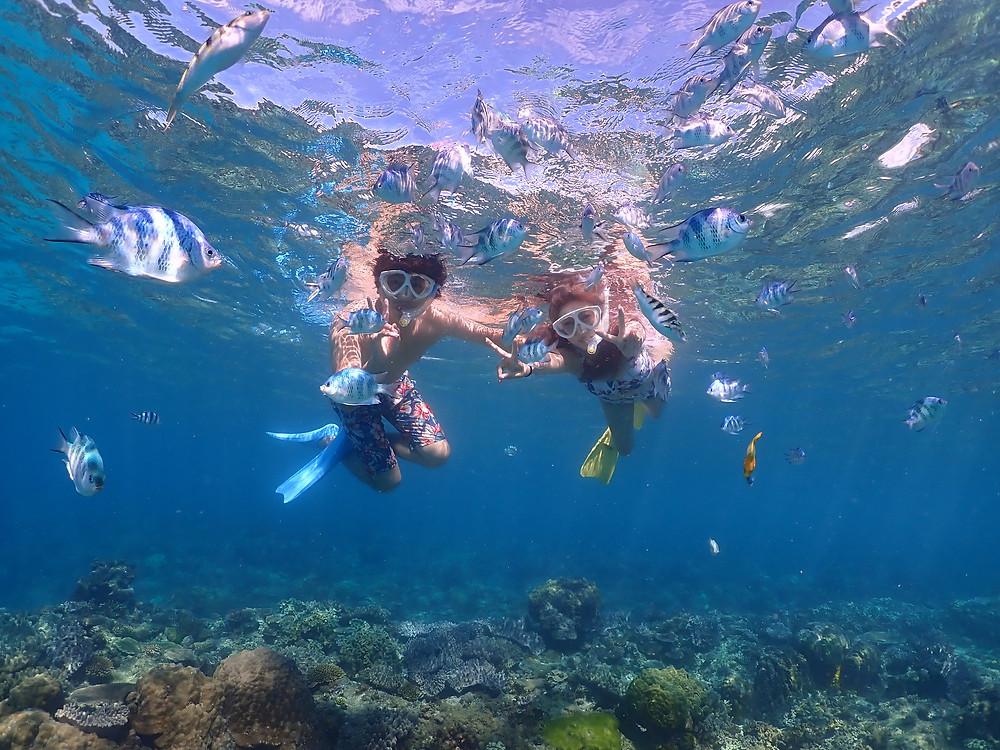 沖縄ゴリラチョップ でスキンダイビング