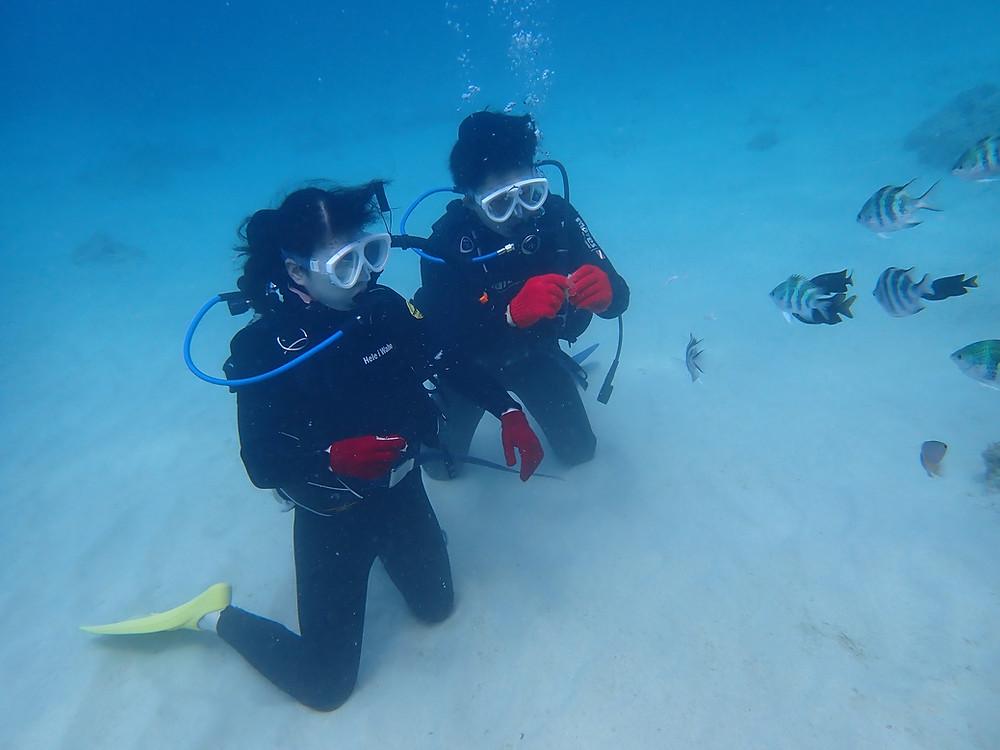 ゴールデンウィーク沖縄本部町で体験ダイビング
