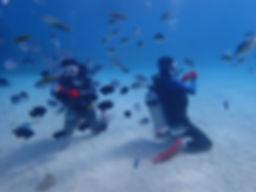 沖縄体験ダイビング.JPG