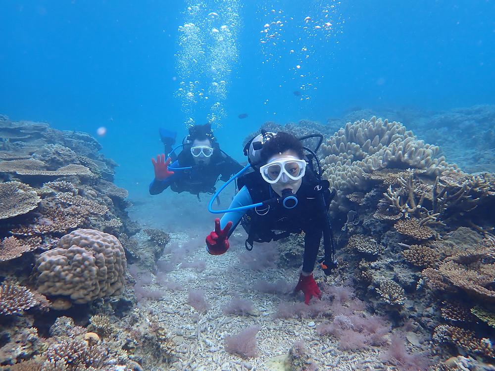 沖縄本部町ゴリラチョップ で初心者大歓迎の体験ダイビング