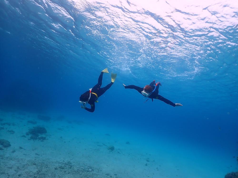 沖縄北部本部町でスキンダイビング とシュノーケリング