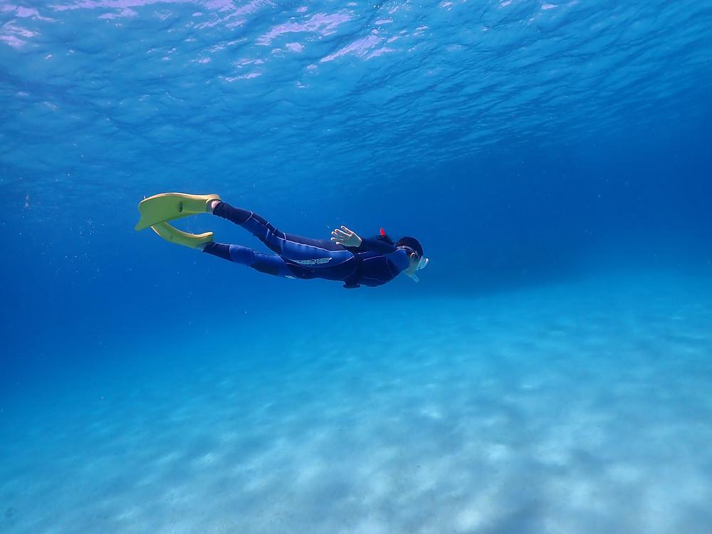 沖縄本島北部でスキンダイビング