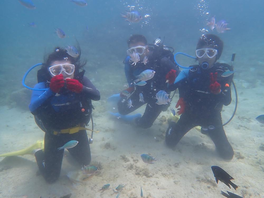 沖縄本部町 体験ダイビング