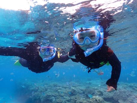 ビーチ体験ダイビング&シュノーケリング 沖縄本部町ゴリラチョップ