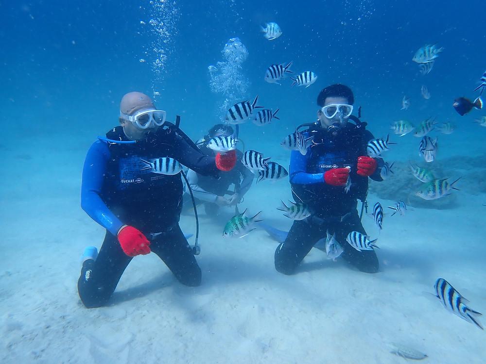 沖縄旅行で体験ダイビングとシュノーケリング