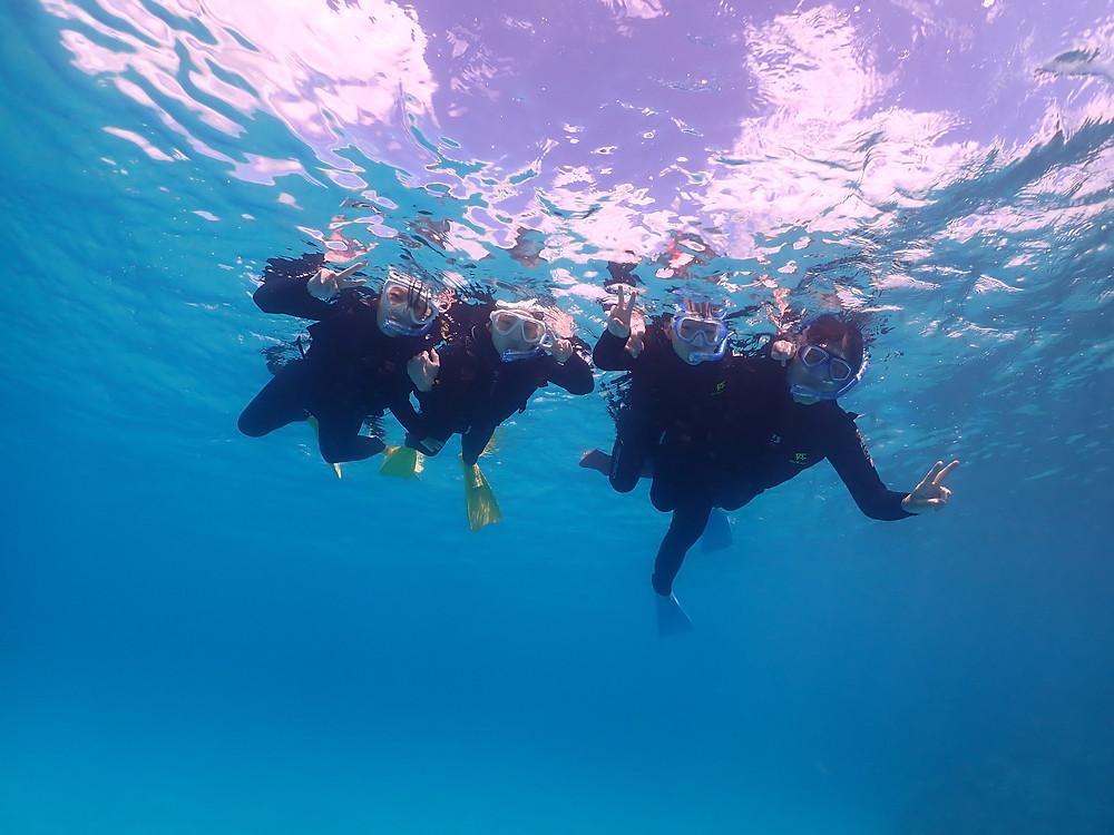 美ら海水族館の近くでダイビング&シュノーケリング