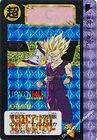 carddass limited 2000 n 9.jpg