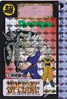 carddass limited 2000 n 10.jpg