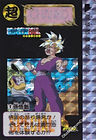 carddass limited 2000 n 5.jpg