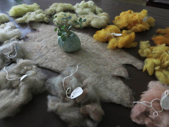 Sun + Plant Dyed Wool