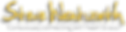 Steve Yellow Logo 2019.png