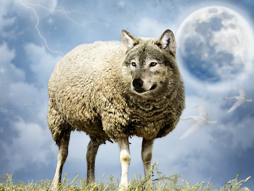 10 Ways to Spot a Spiritual Wolf in Sheep's Clothing
