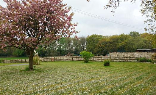 Continuous Hurdle, Dorset fences, ecological fences