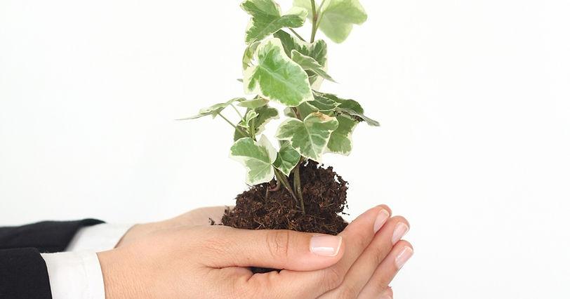 La ficalité environnementale permettant la transition énergétique