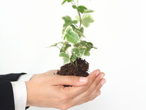 4 Ways to Make Your Car Title Loan Business Eco/Green Friendly
