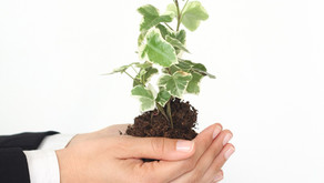 The 7 types of growth equity every entrepreneur should know