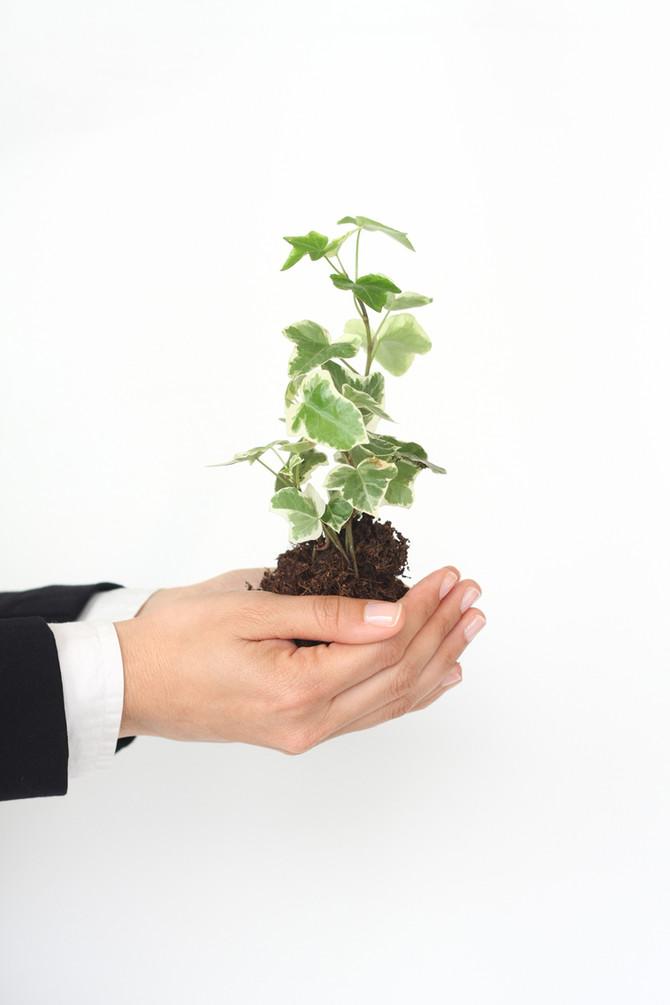 Geldanlage ist kein Bioprodukt