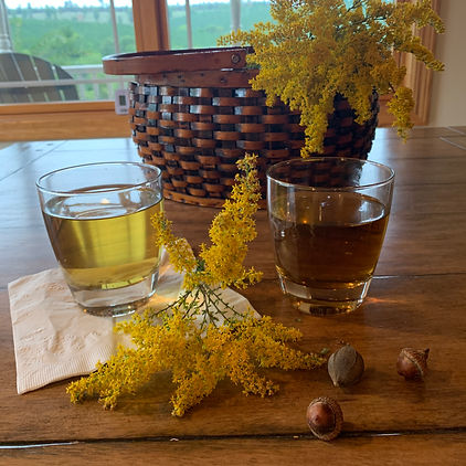 Two clear glasses, a basket, yellow flowers, and a few nuts are sitting on a wooden table. One glass has a light golden liquid and the other contains a dark amber drink. The basket contains more yellow flowers. The flowers are tiny blossoms growing in long conical clusters