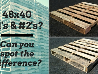 But it's the same pallet right? Investigating 48x40 used pallets.