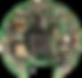 JN9A0320_web_bearbeitet.png
