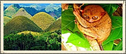 Bohol Tour Package, Promo Tours, Philippine Travel. Tour Package, Package Tours