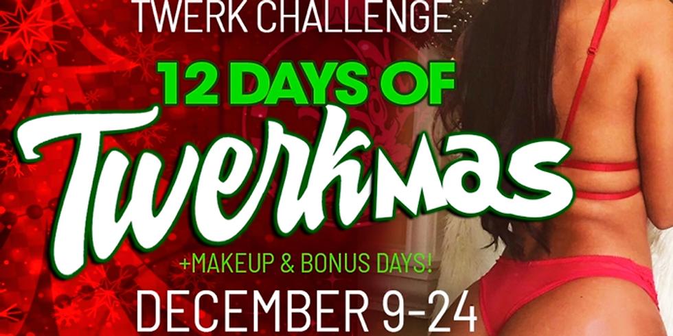 12 Days of Twerkmas