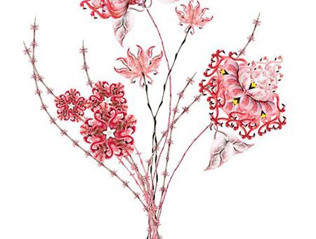 :: flamingo-rosa ::