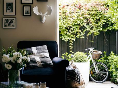 :: o jardim invade a casa ::