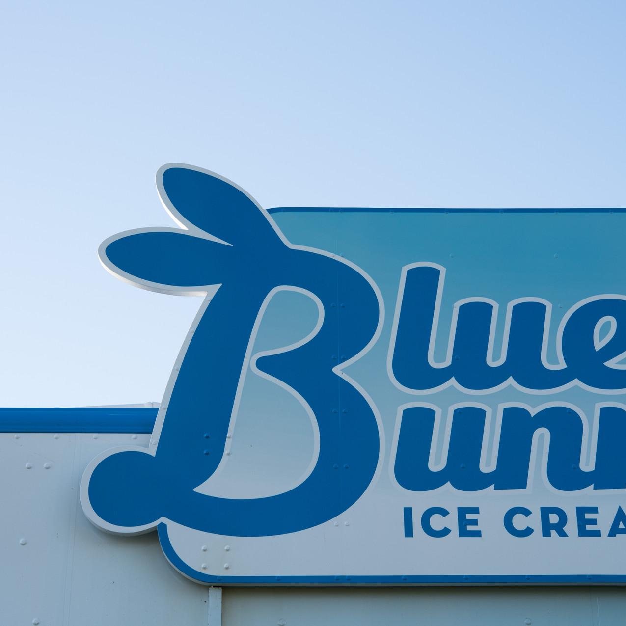 Bluebunny-3