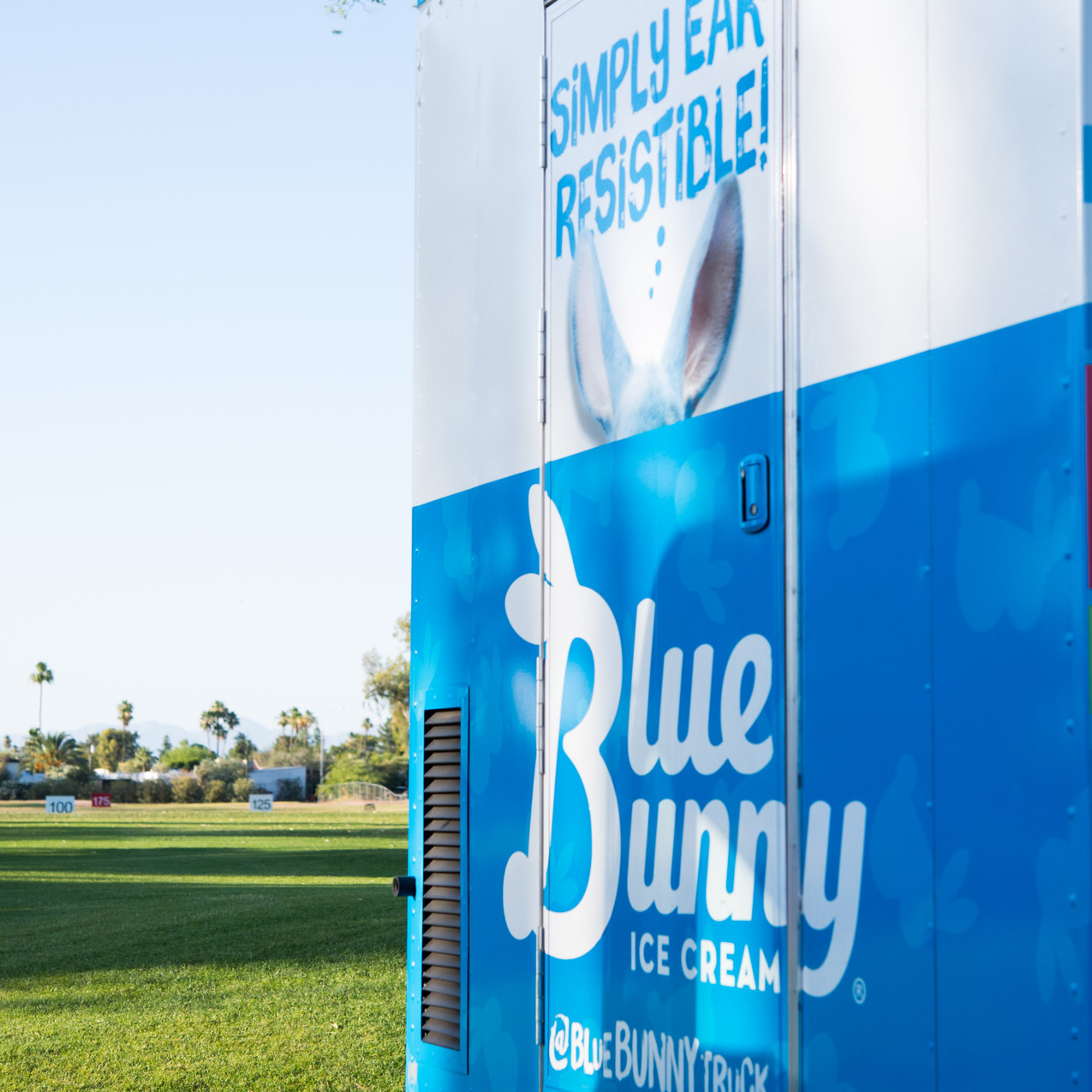Bluebunny-2
