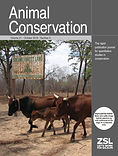 Animal Conservation 21: 376-386