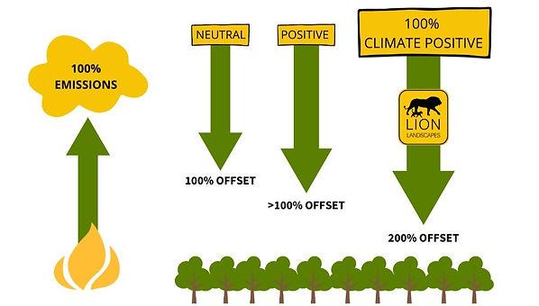 Carbon neutral and carbon positive