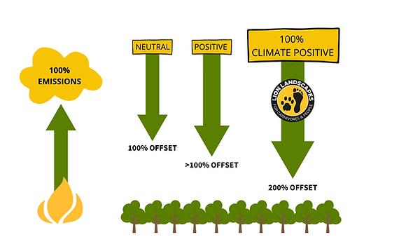 carbon neutral (5).png
