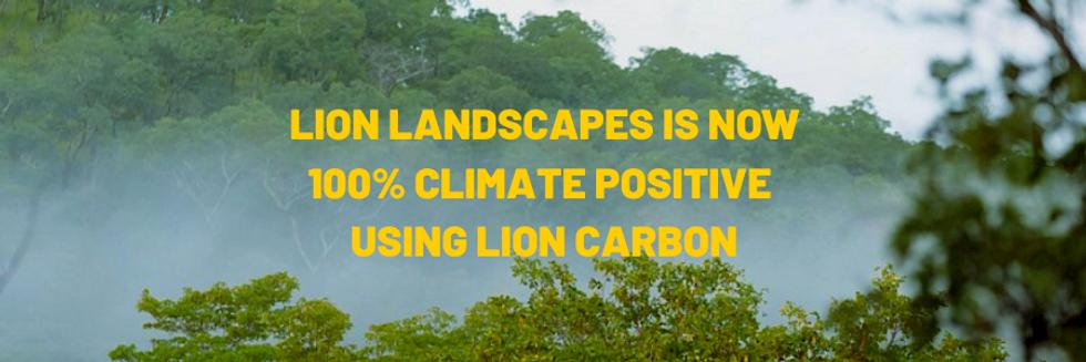 Lion landscapes is Now (9).png
