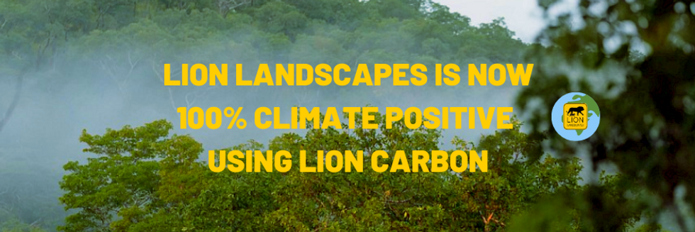 Lion landscapes is Now (3).png