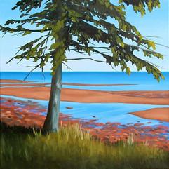 Tidal Flats by Daina Deblette.jpg