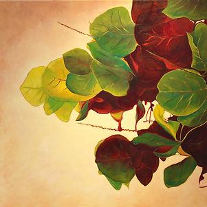 Seagrape Leaves, oil painting by local Salt Spring Island artist Daina Deblette at Ocean Art Studio