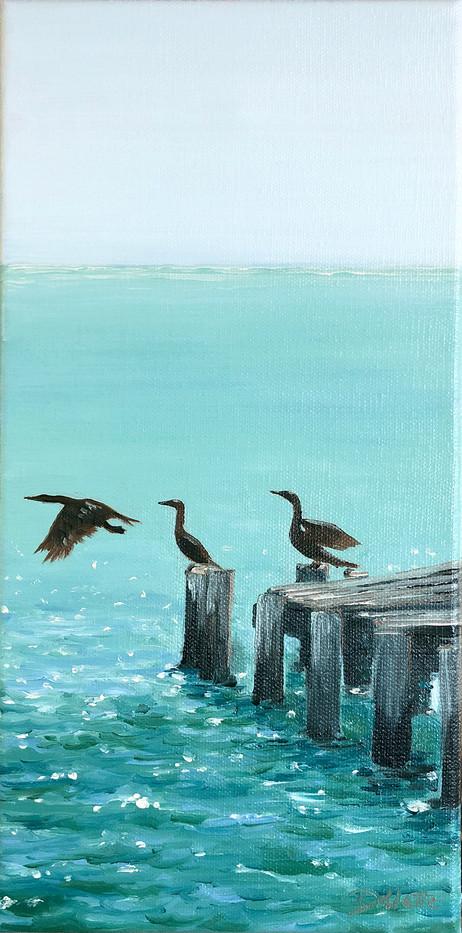 Three Birds