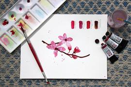 Cherry Blossom Watercolour Demo by Daina Deblette.jp