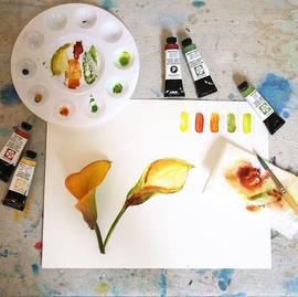 Yellow Cala Lily Watercolour by Daina Deblette.jpg