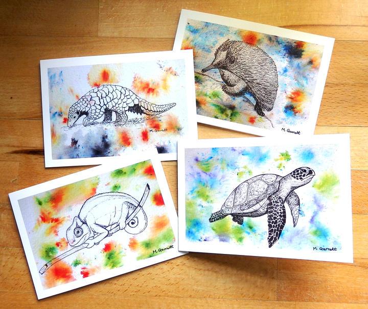 Wonderful-wildlife-cards.jpg