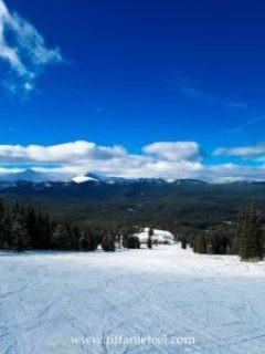 Views down the mountain of Ski Cooper near Chicago Ridge.