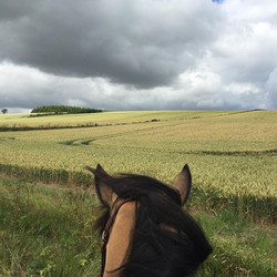 Lincolnshire wolds horse riding
