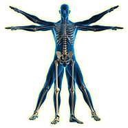 Traumatologia_ortopedia.png