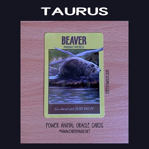 taurus-march-2021-labelled-850-sq.jpg