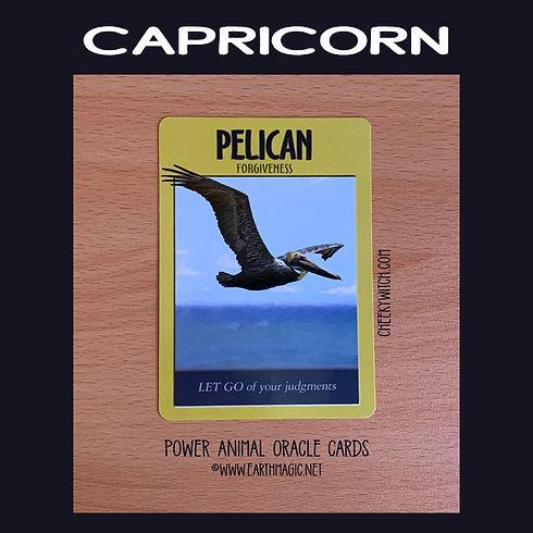 capricorn-march-2021-labelled-850-sq.jpg